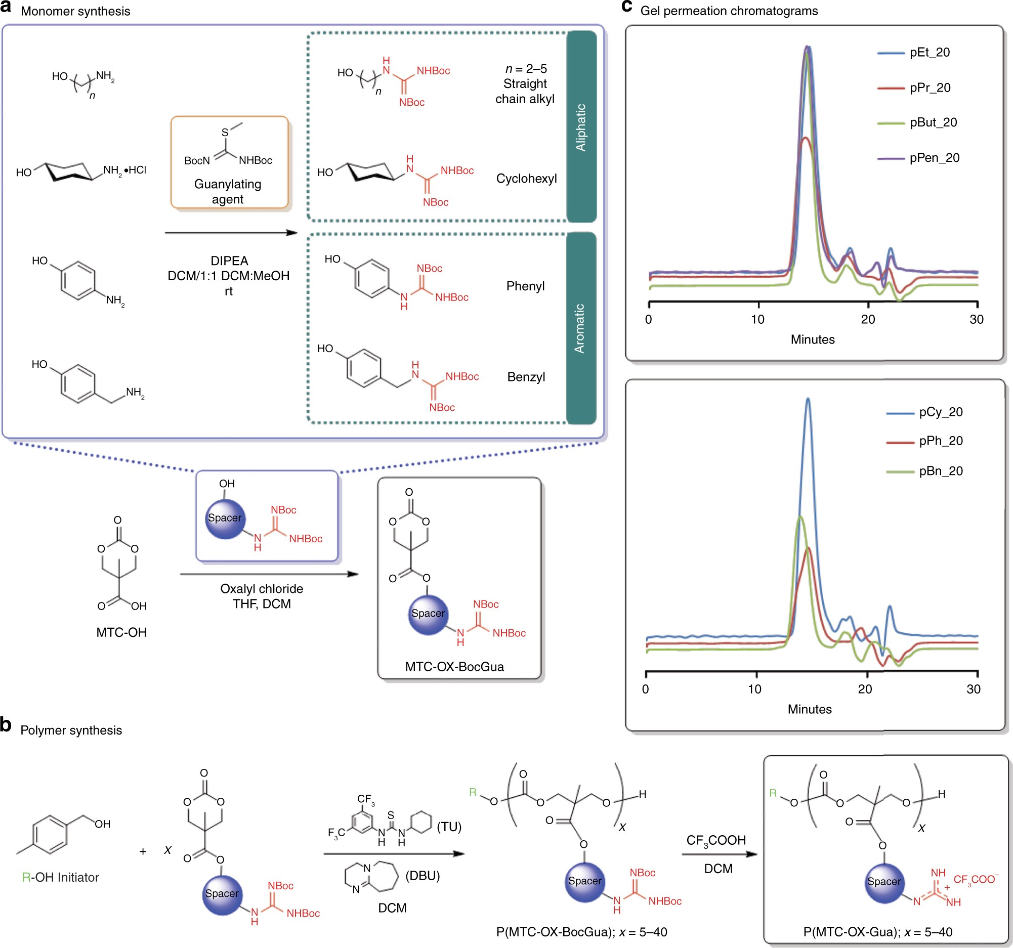 A Macromolecular Approach To Eradicate Multidrug Resistant Bacterial Vacuum Flash Ox 500 Infections While Mitigating Drug Resistance Onset Nature Communications