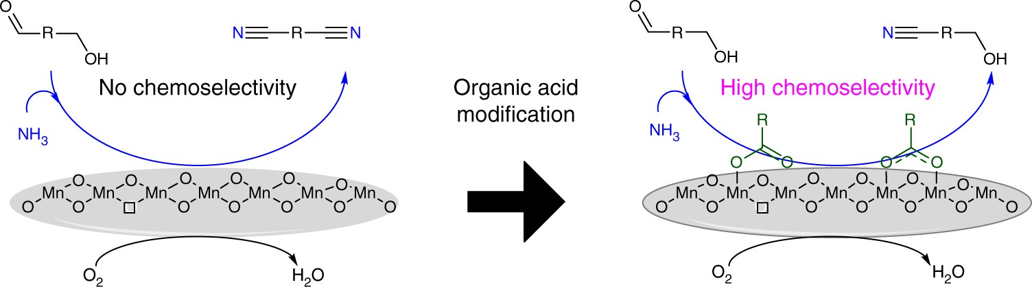 Carboxylic Acid Modified Metal Oxide Catalyst For Selectivity