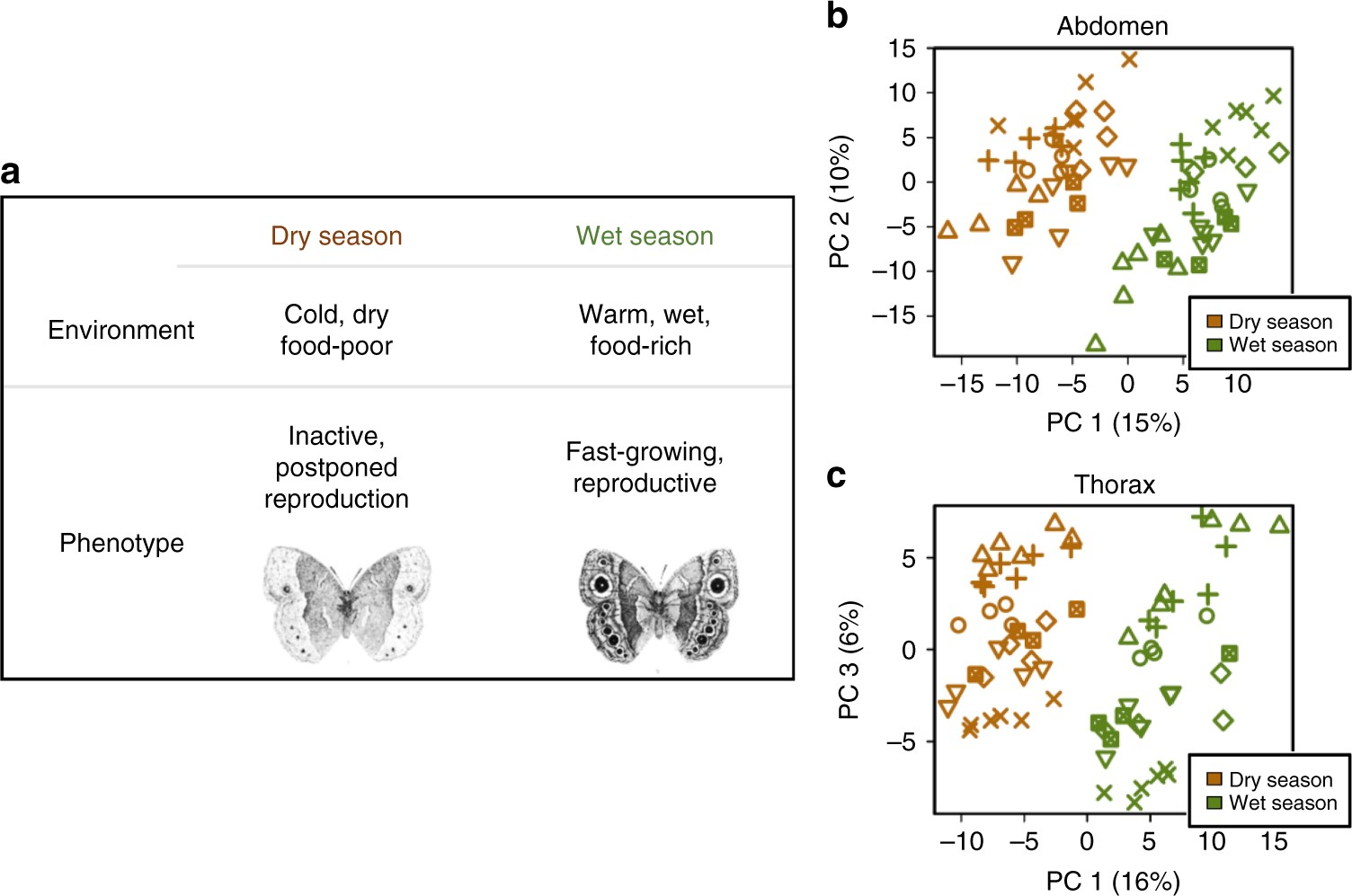 Strong phenotypic plasticity limits potential for