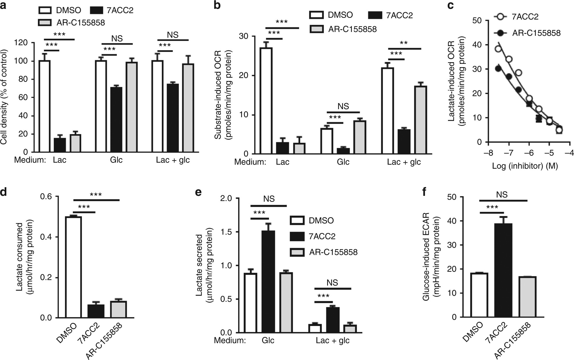 Interruption of lactate uptake by inhibiting mitochondrial pyruvate  transport unravels direct antitumor and radiosensitizing effects | Nature  Communications