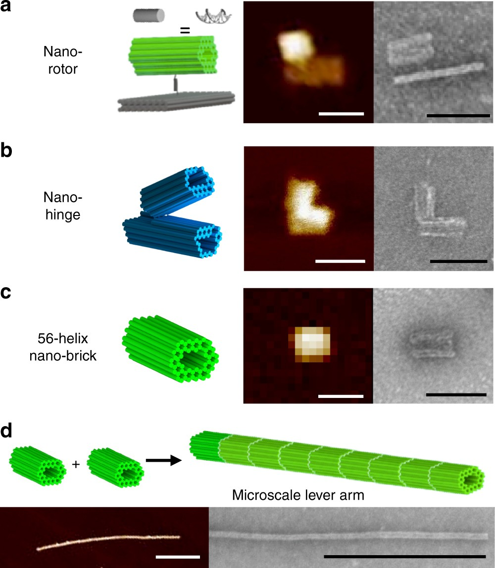 Real-time magnetic actuation of DNA nanodevices via modular