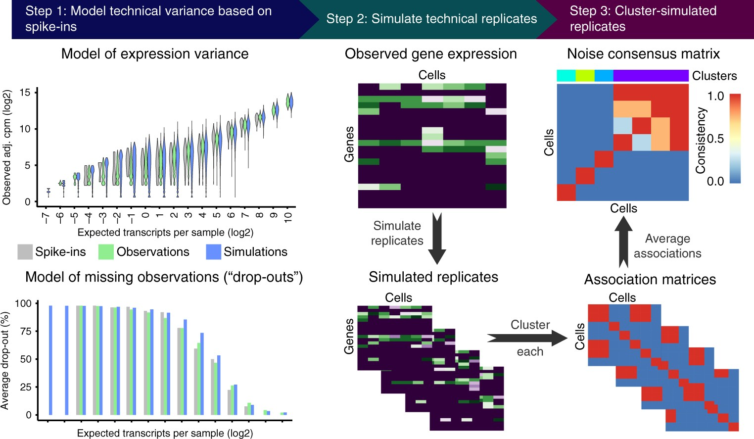 BEARscc determines robustness of single-cell clusters using ...