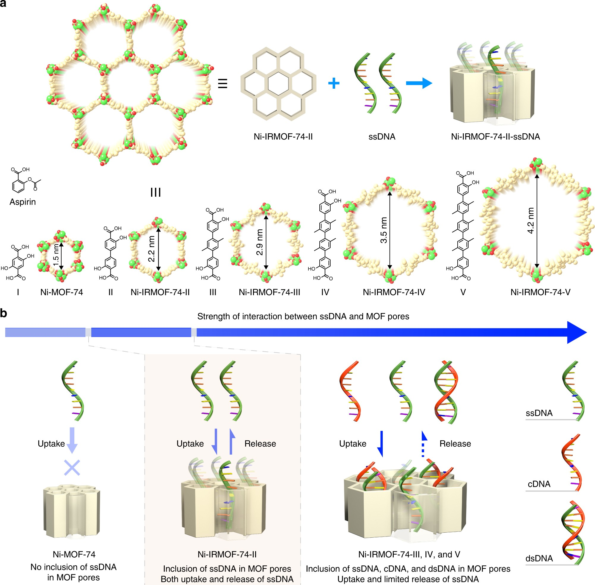 Metal Organic Frameworks For Precise Inclusion Of Single Stranded Advanced Led Temperature Indicator Electronics Project Dna And Transfection In Immune Cells Nature Communications