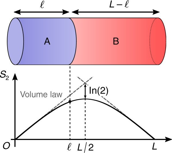 Universality in volume-law entanglement of scrambled pure