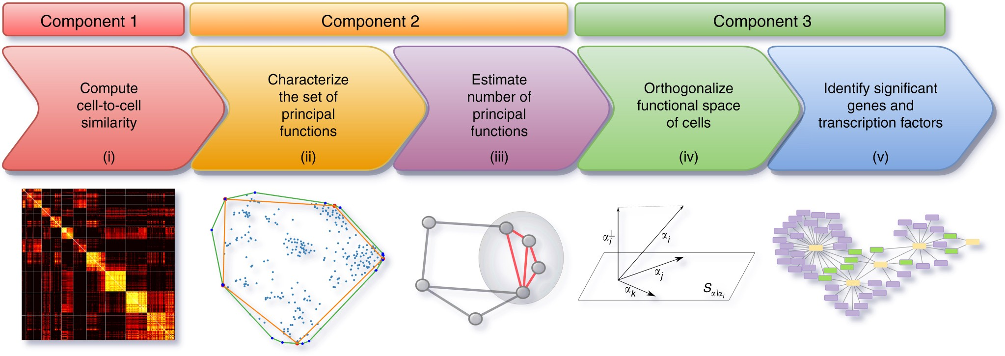 A geometric approach to characterize the functional identity