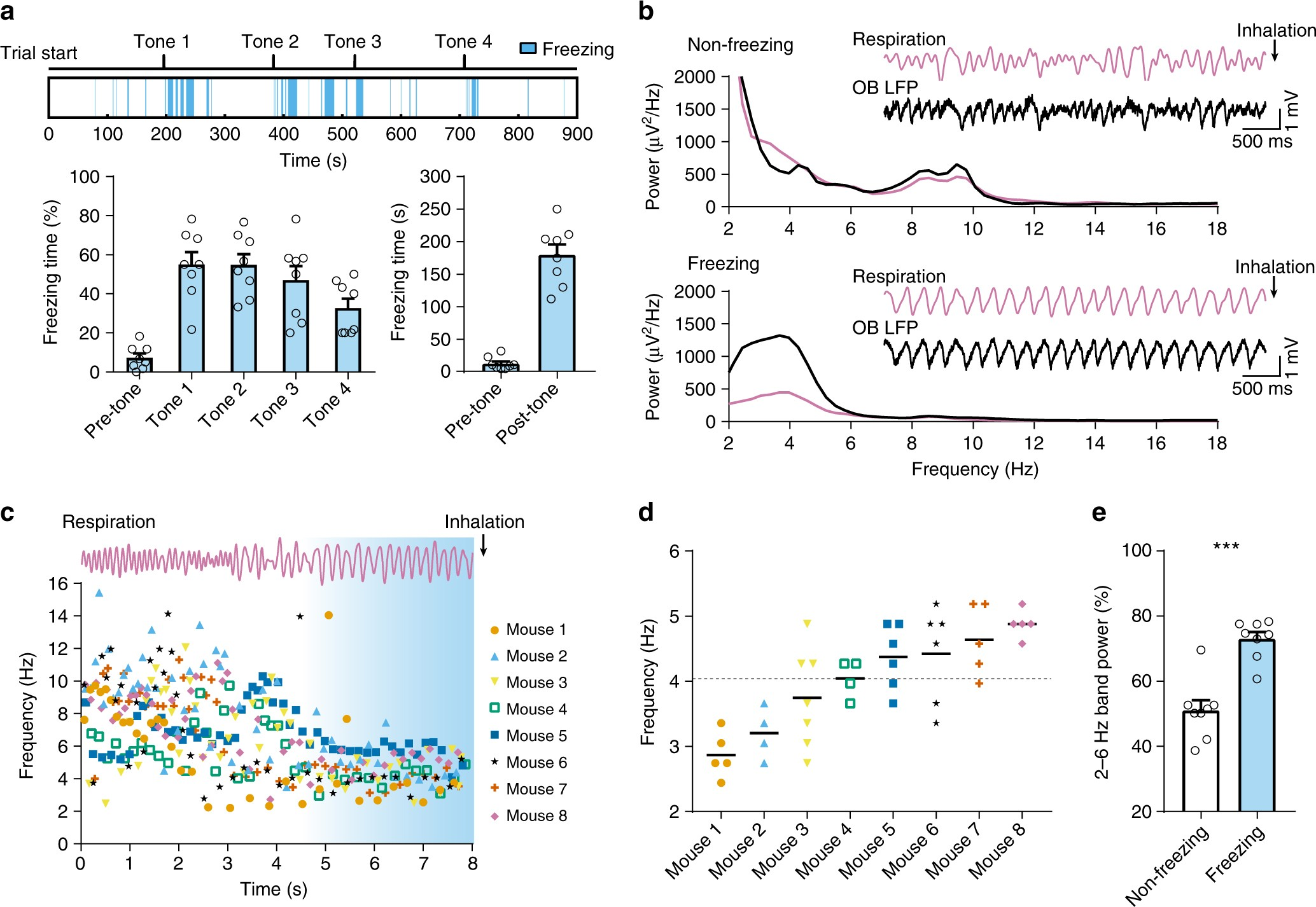 Olfactory inputs modulate respiration-related rhythmic activity in ...