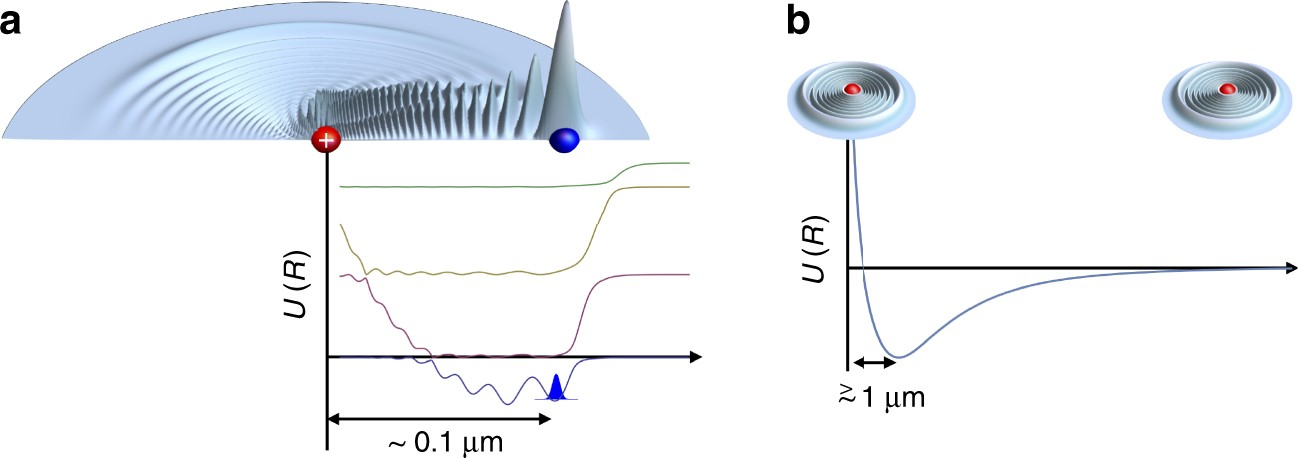 Ultracold Rydberg molecules | Nature Communications