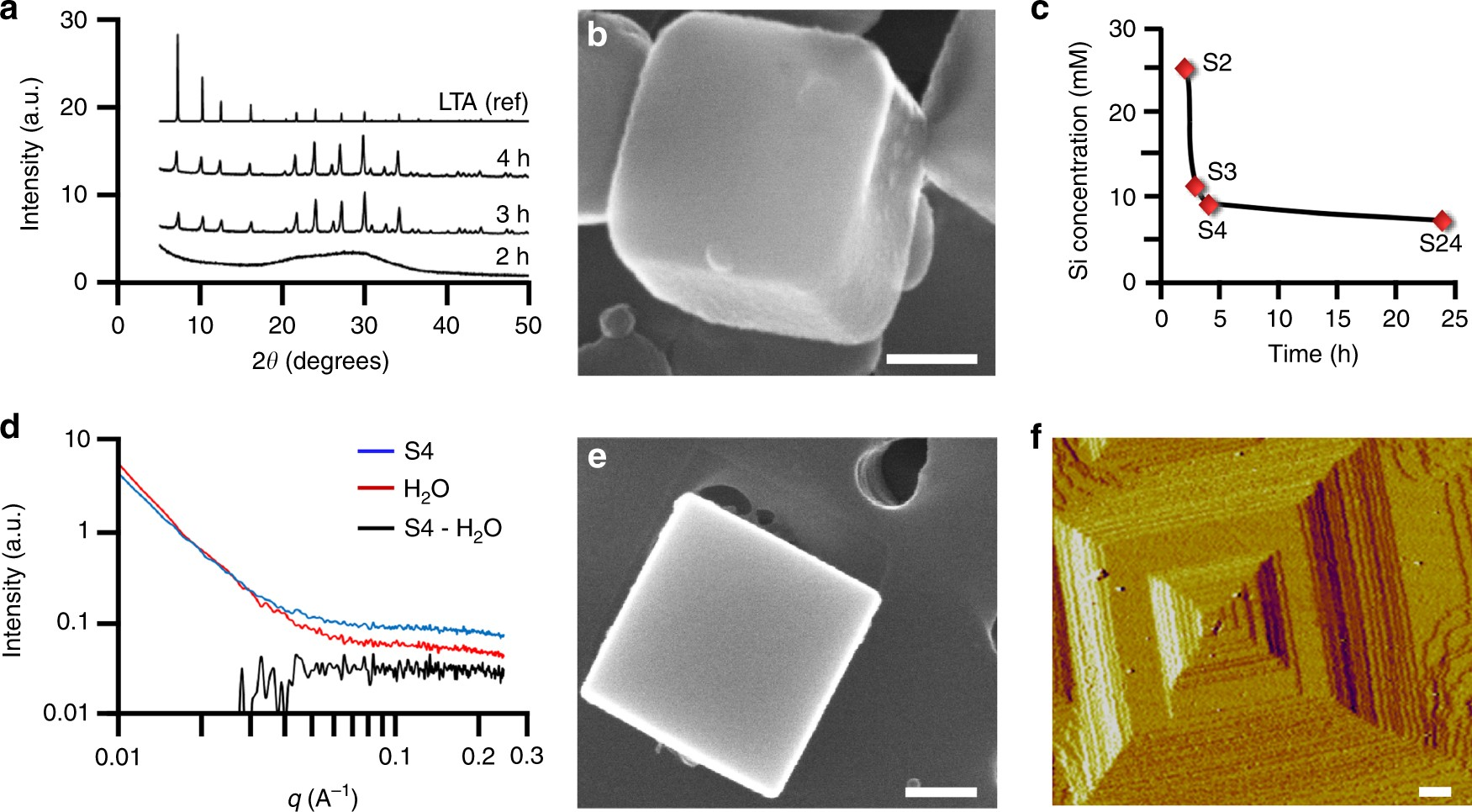 Transient Modes Of Zeolite Surface Growth From 3d Gel Like