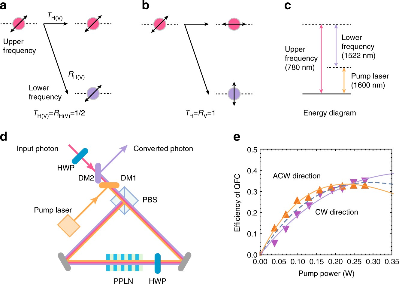 Polarization insensitive frequency conversion for an atom
