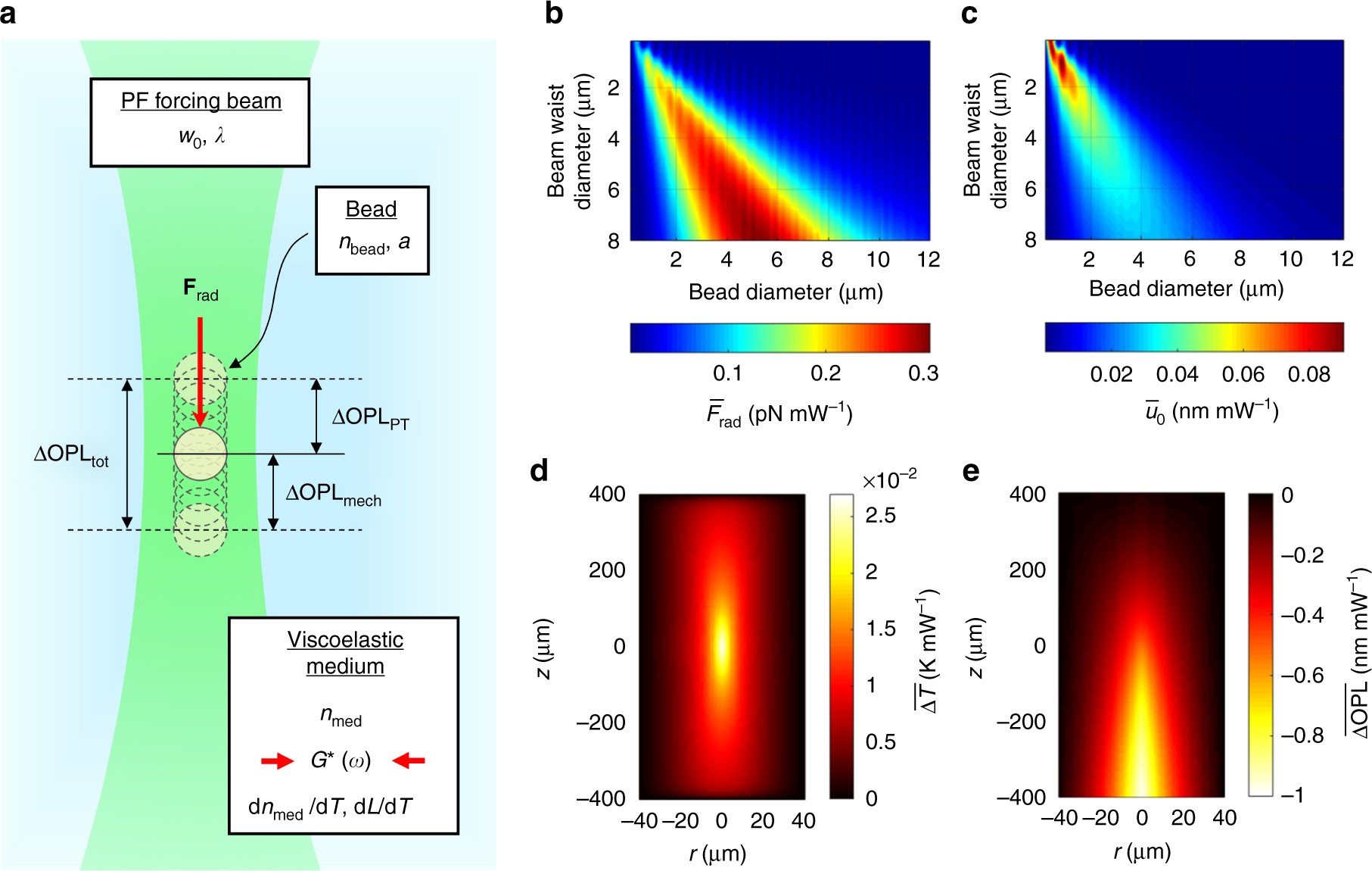 Photonic force optical coherence elastography for three