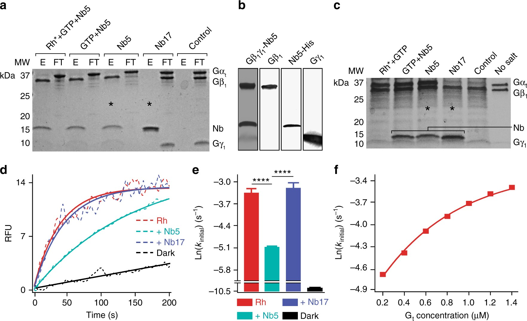 targeting g protein-coupled receptor signaling at the g protein level with  a selective nanobody inhibitor | nature communications