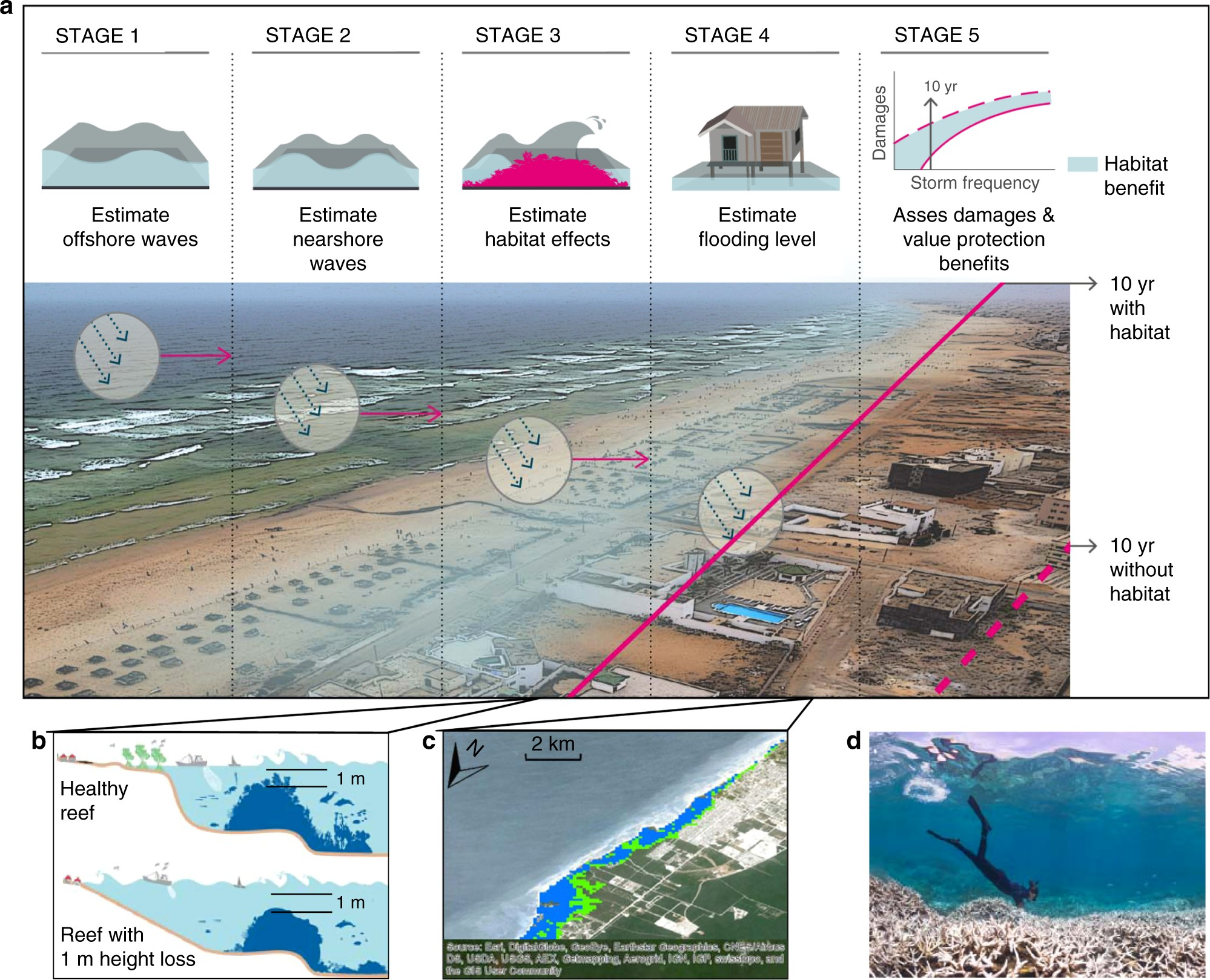 The global flood protection savings provided by coral reefs