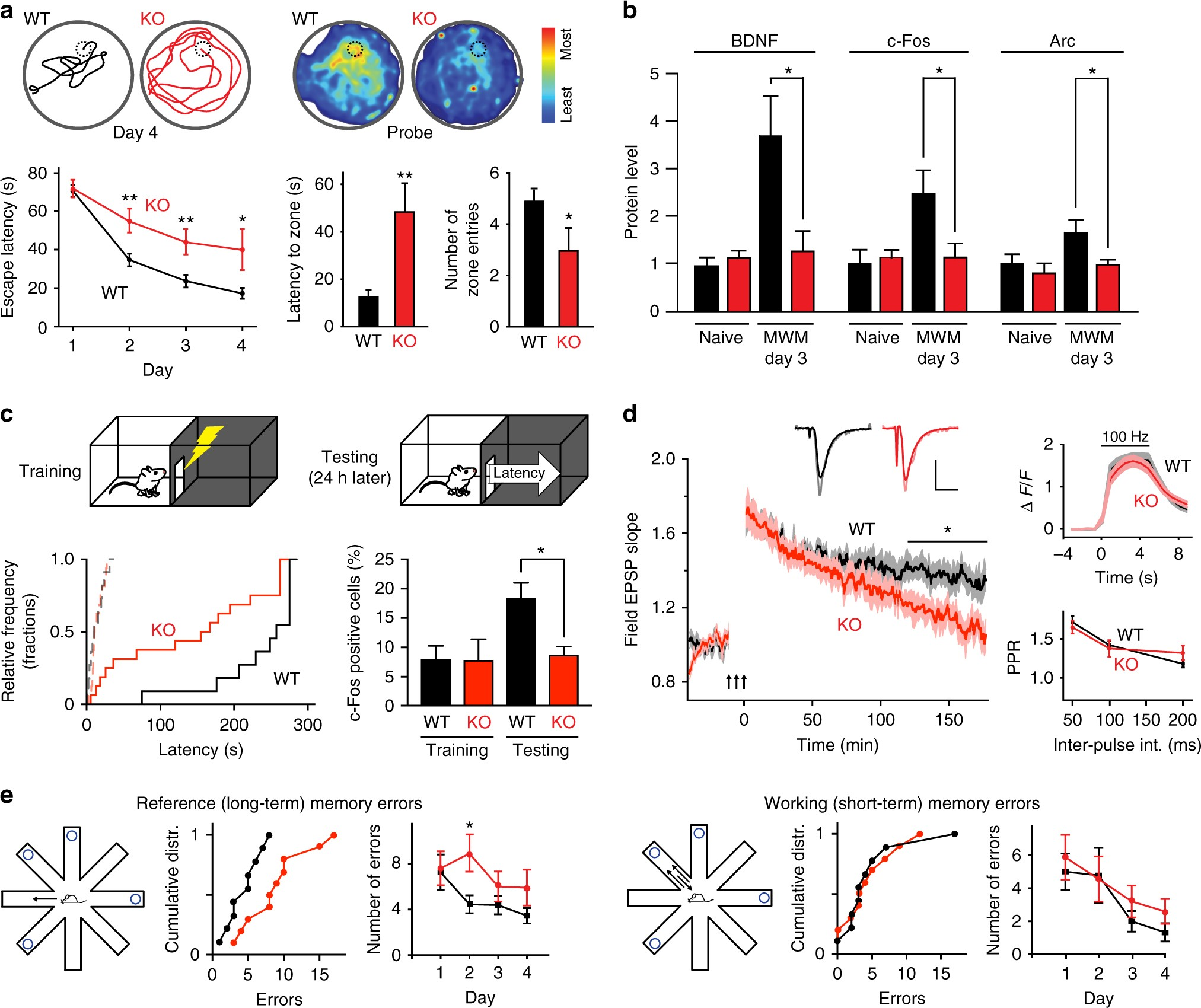 Calmodulin Shuttling Mediates Cytonuclear Signaling To Trigger Snap Circuits Pro 500in1 Sc500 S With Computer Inteface Experience Dependent Transcription And Memory Nature Communications
