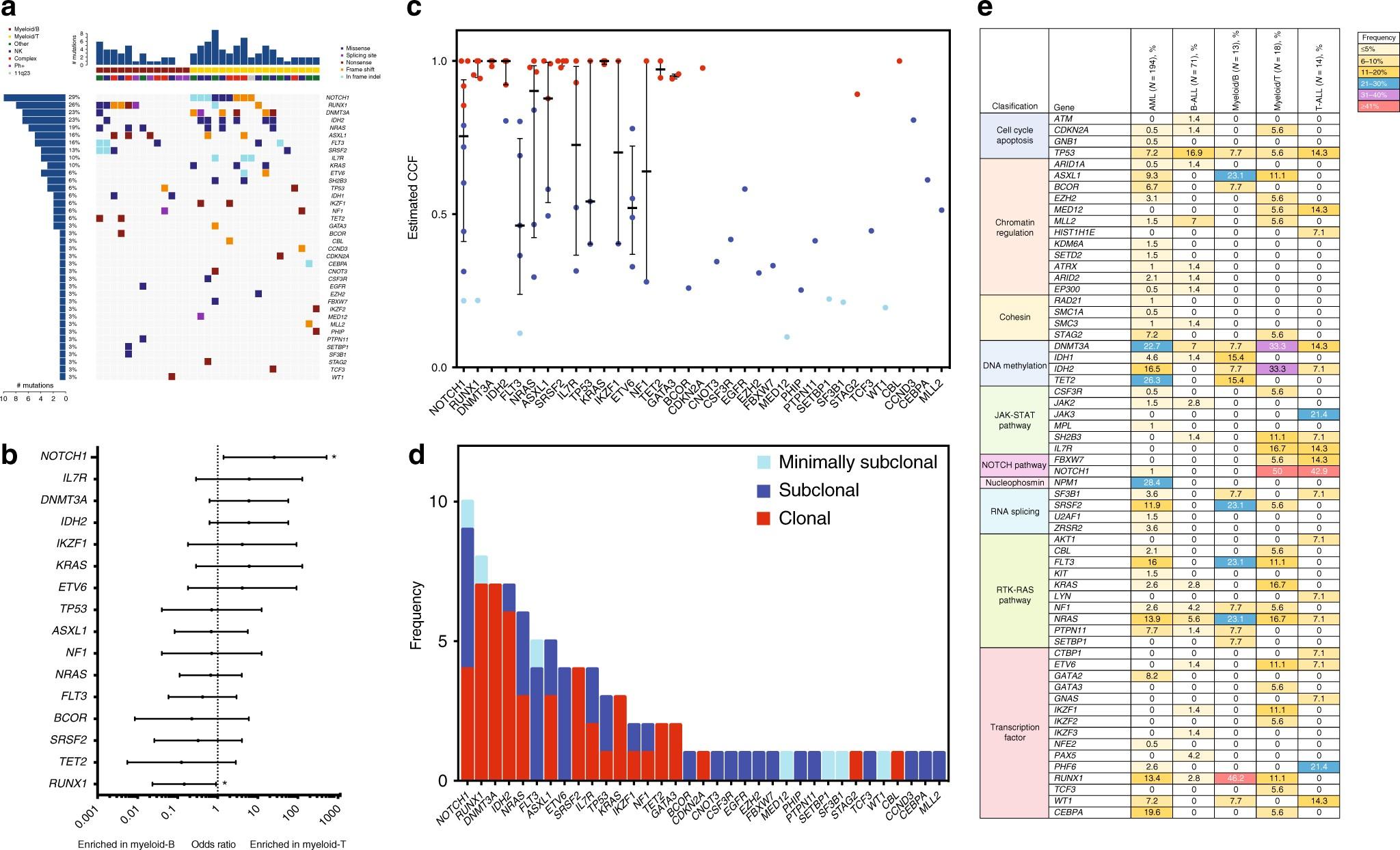 Integrative genomic analysis of adult mixed phenotype acute