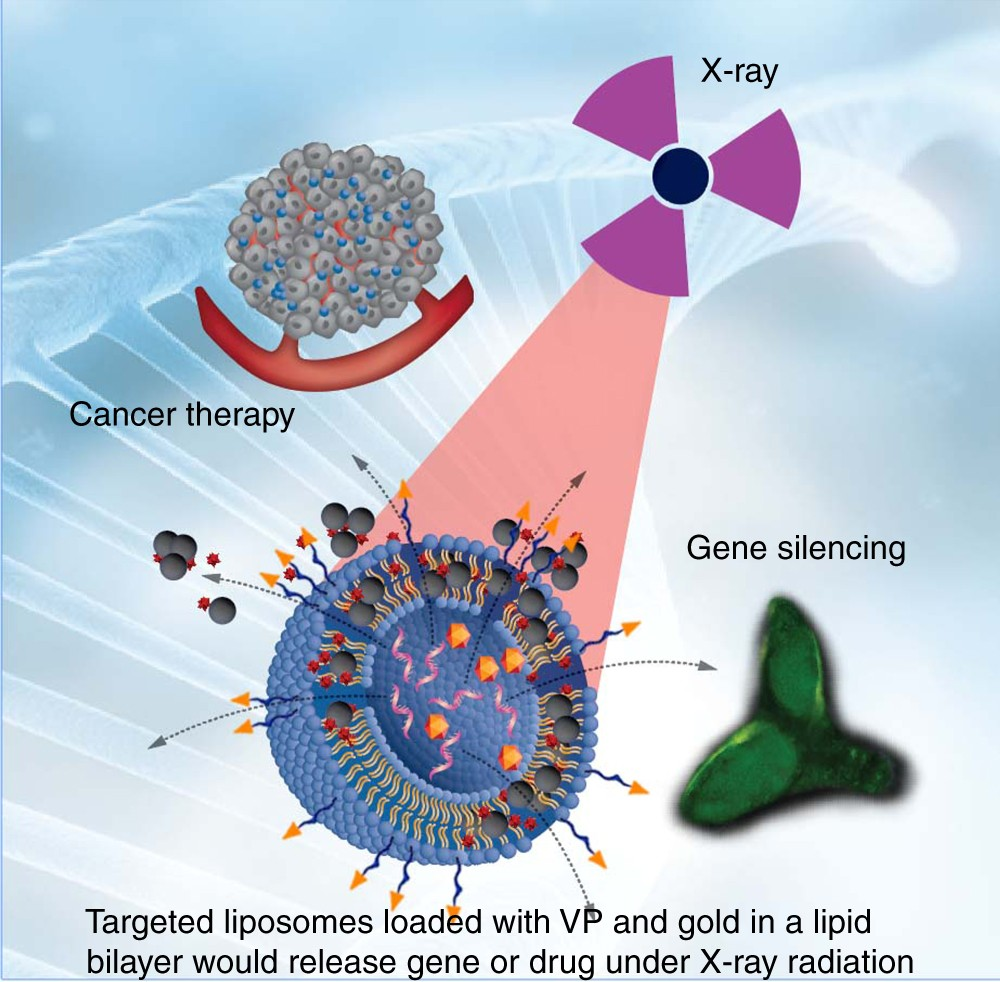 X Ray Radiation >> Controlled Gene And Drug Release From A Liposomal Delivery Platform