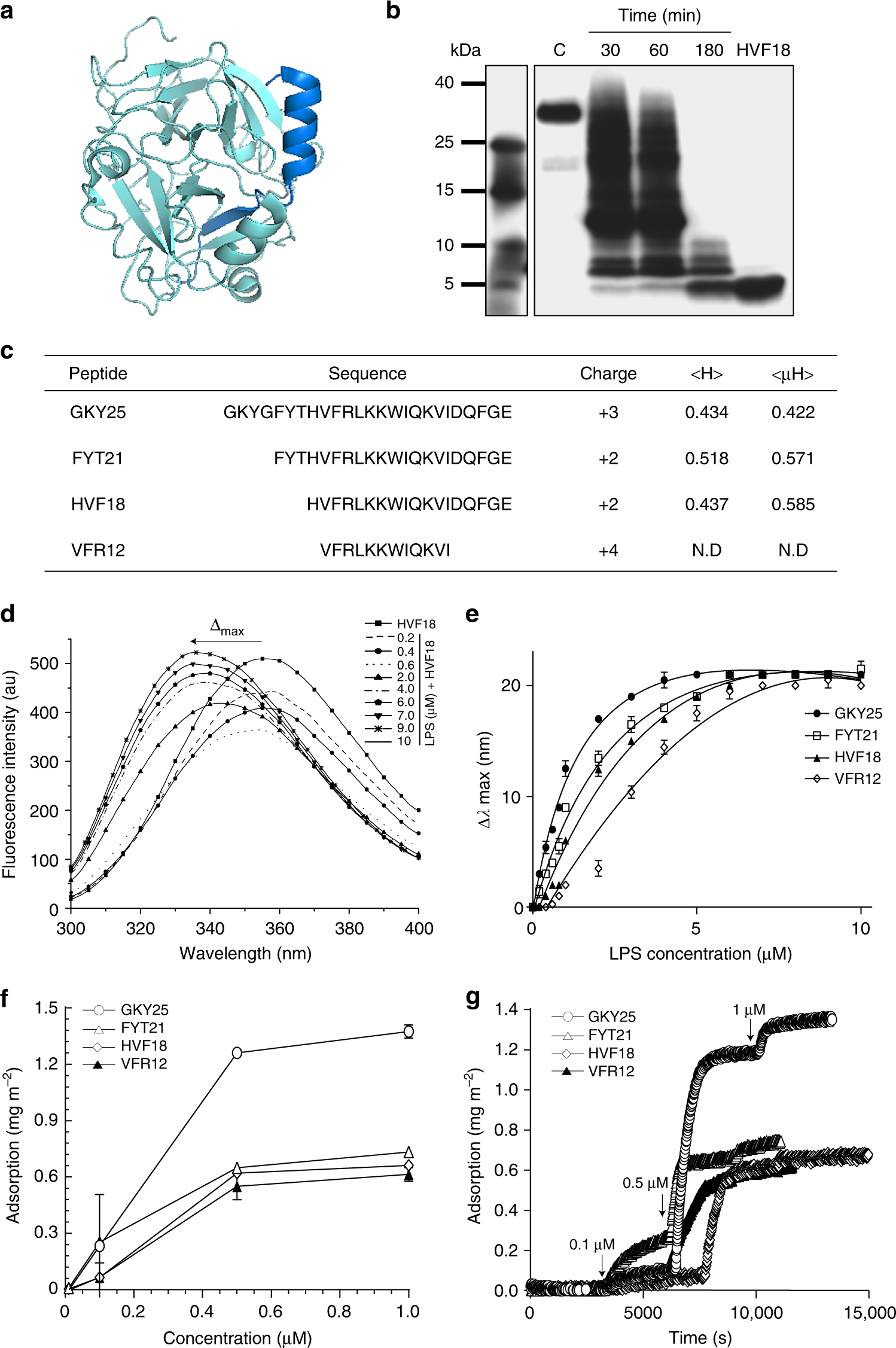 Structural basis for endotoxin neutralisation and anti