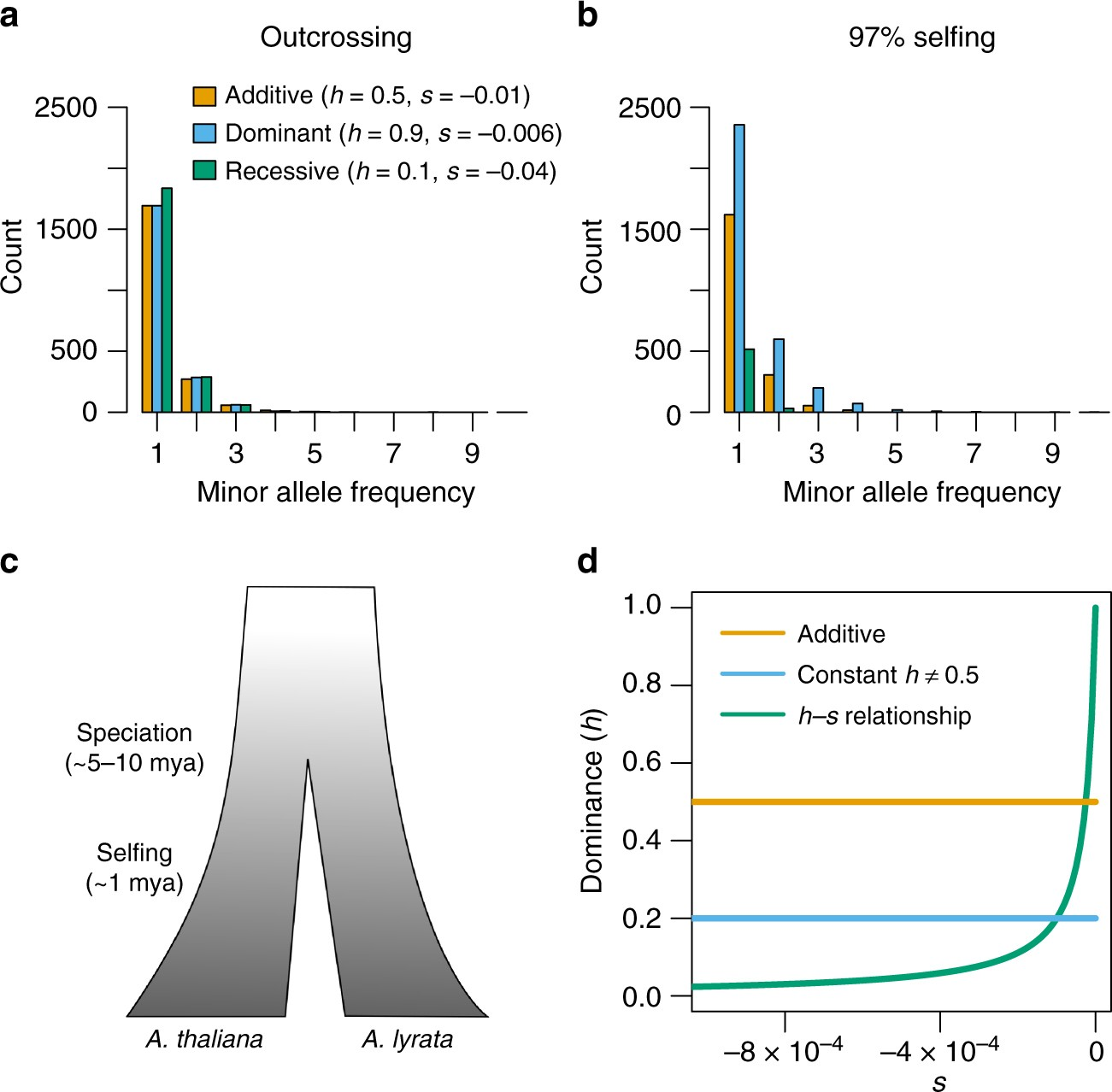 Gene expression drives the evolution of dominance | Nature