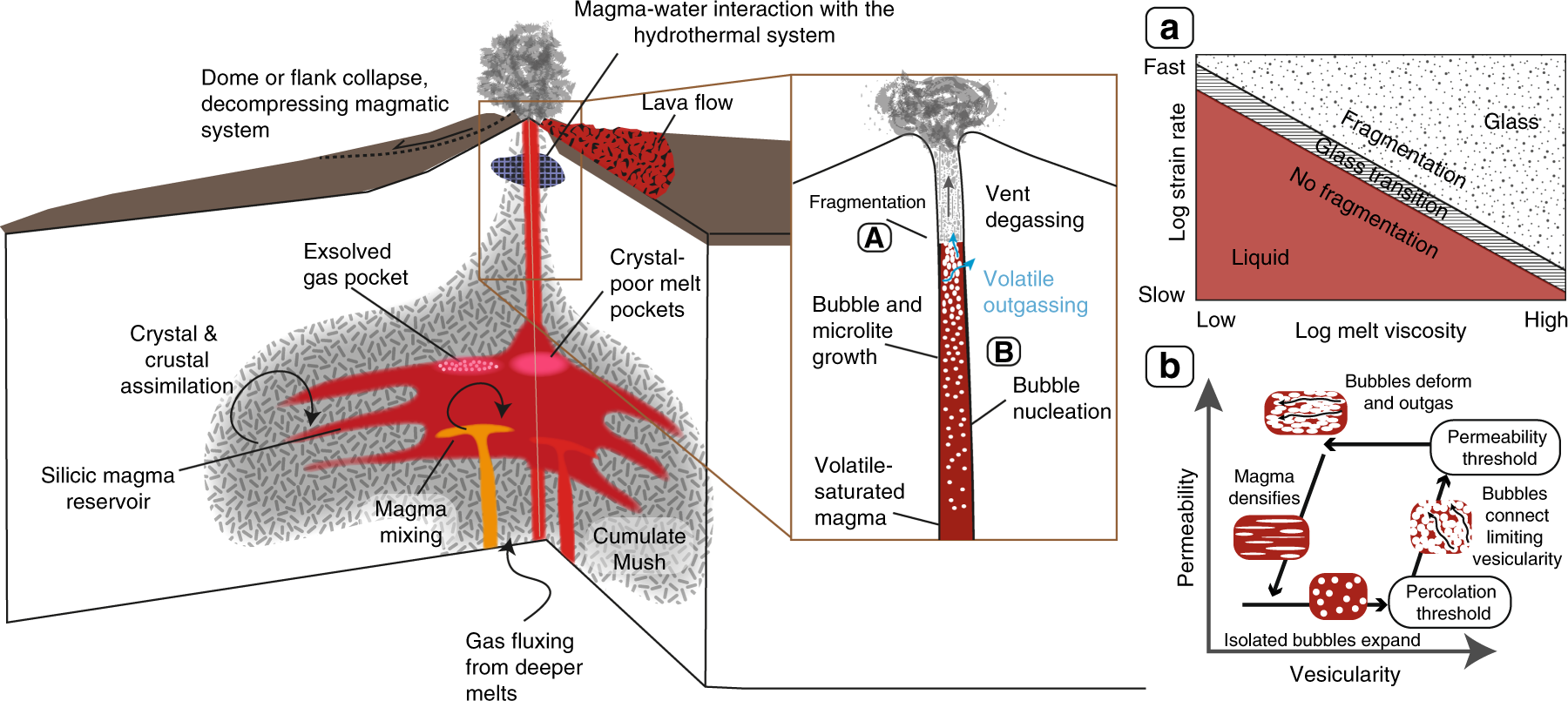 Controls on explosive-effusive volcanic eruption styles