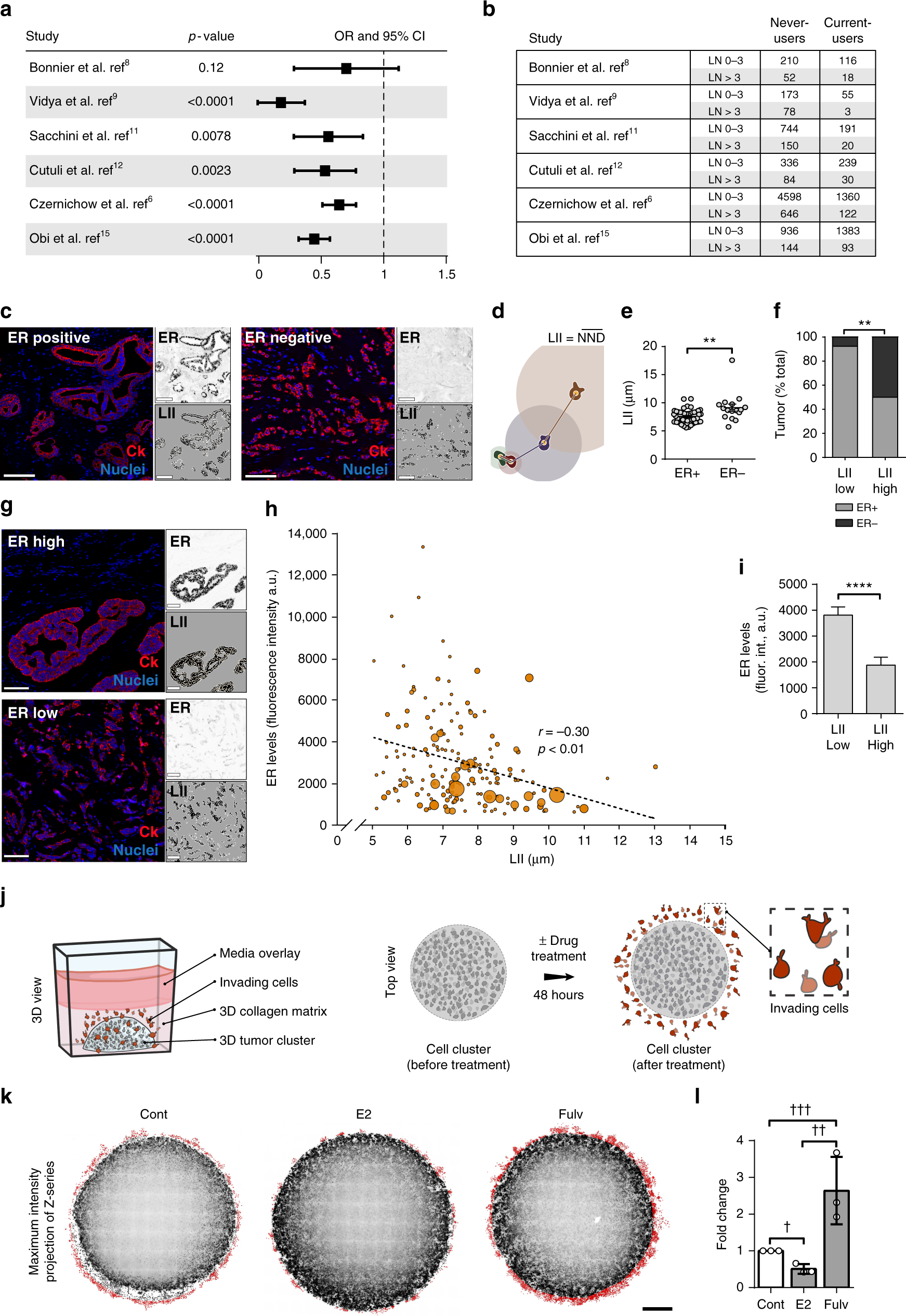The Actin Cytoskeletal Architecture Of Estrogen Receptor Positive F 117 Engine Diagram Breast Cancer Cells Suppresses Invasion Nature Communications
