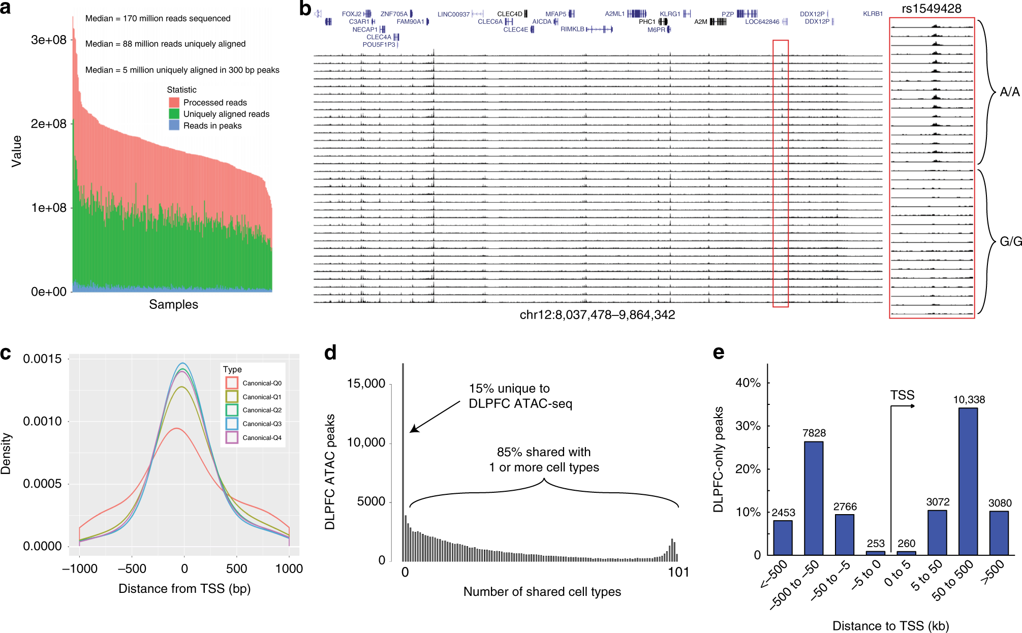 Evaluation of chromatin accessibility in prefrontal cortex