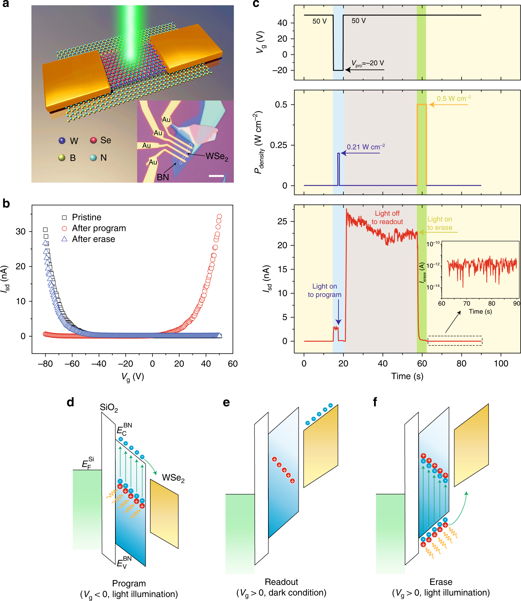 Two-dimensional multibit optoelectronic memory with