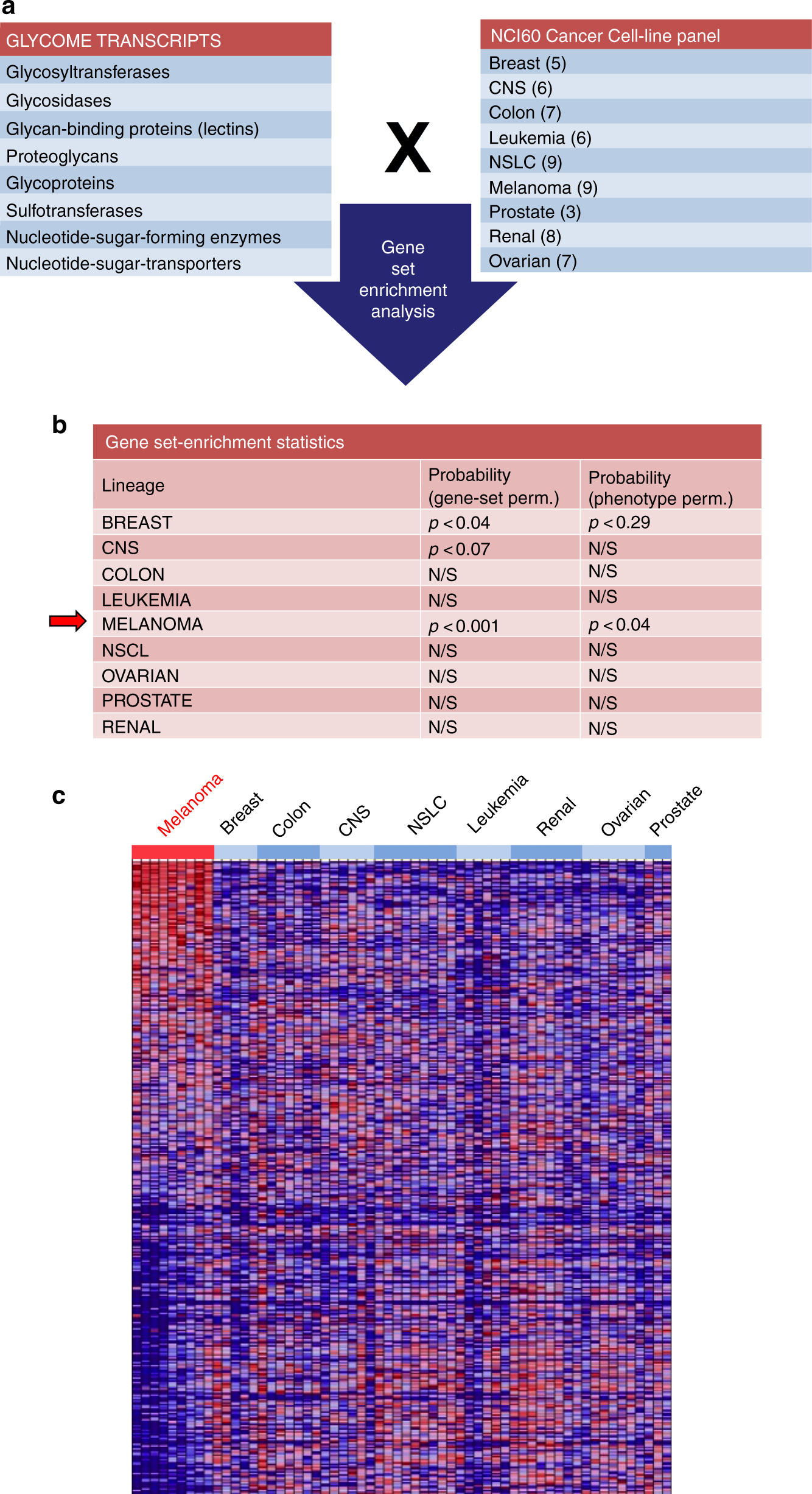 Loss of GCNT2/I-branched glycans enhances melanoma growth and