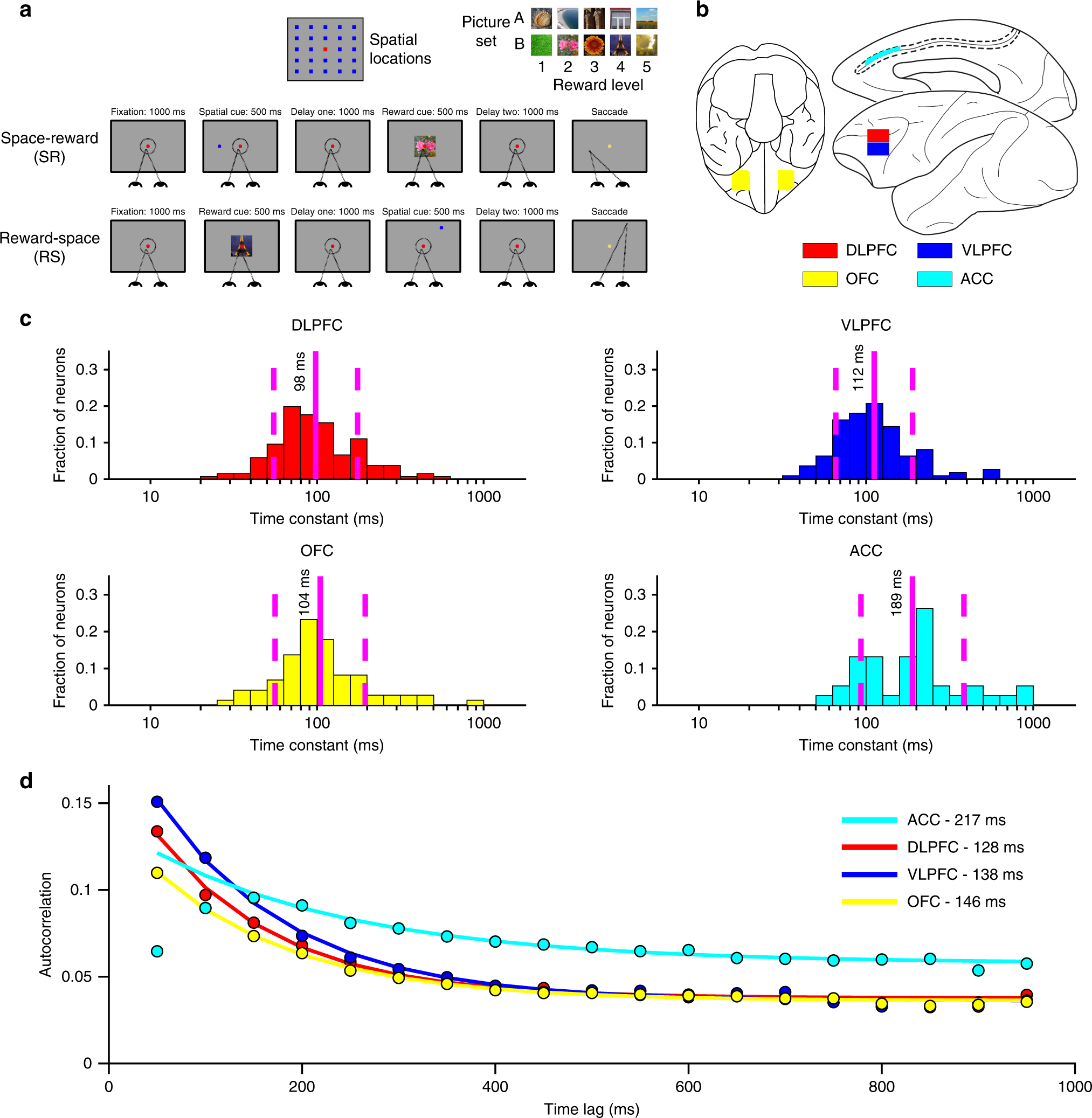 Reconciling Persistent And Dynamic Hypotheses Of Working Memory Circuit Is Correct Or Not Thisalso Will Display The Output Like In Coding Prefrontal Cortex Nature Communications