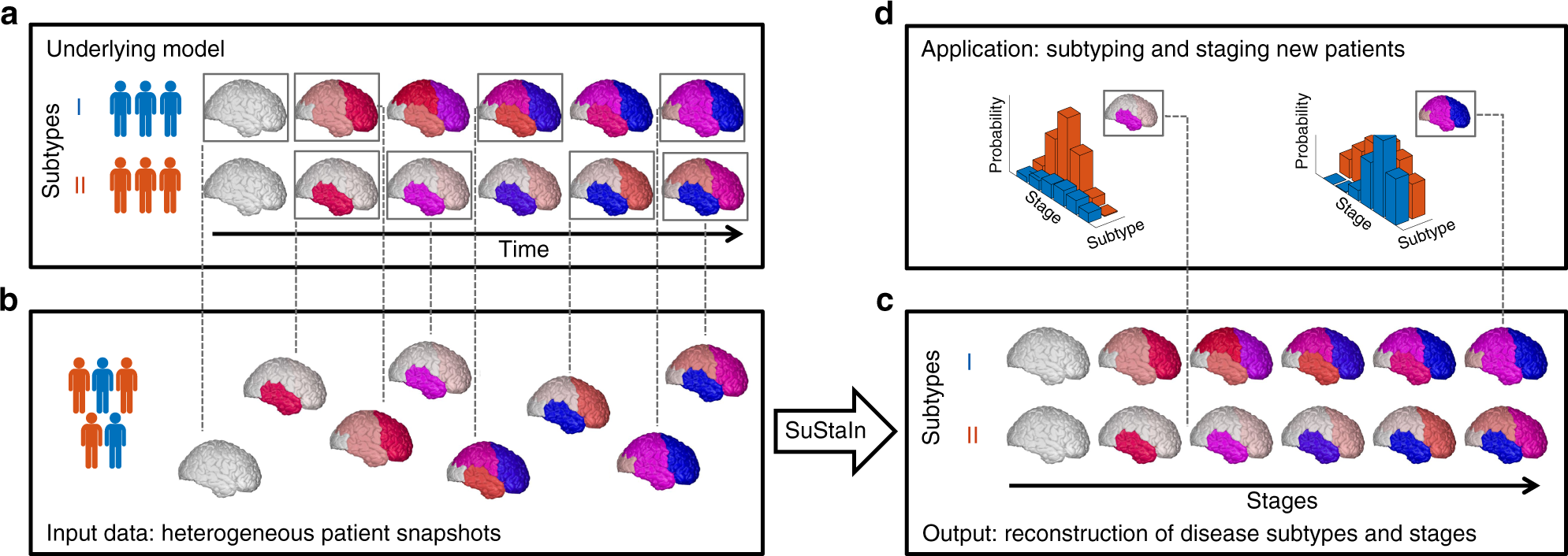 Uncovering the heterogeneity and temporal complexity of