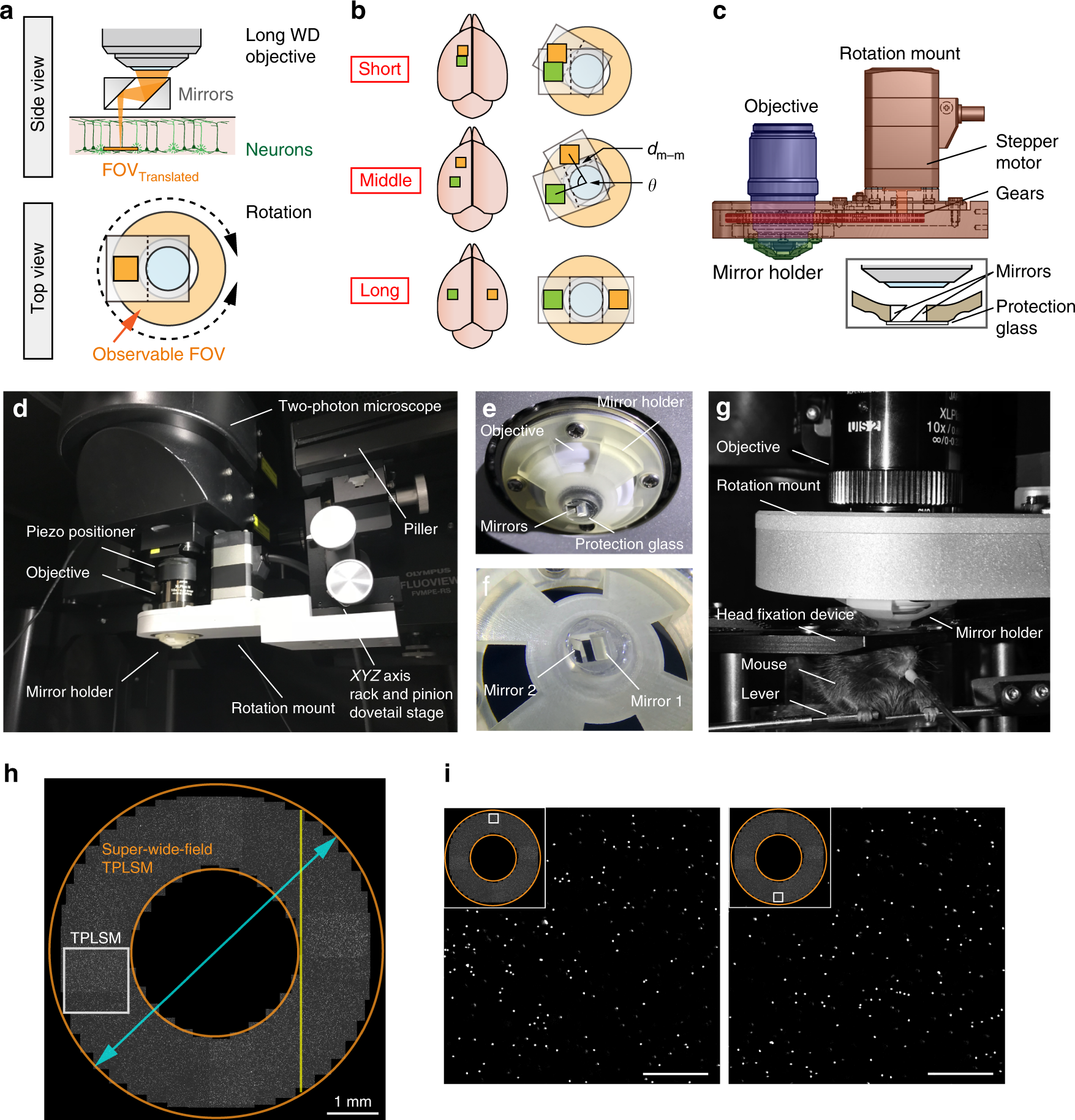 Super-wide-field two-photon imaging with a micro-optical
