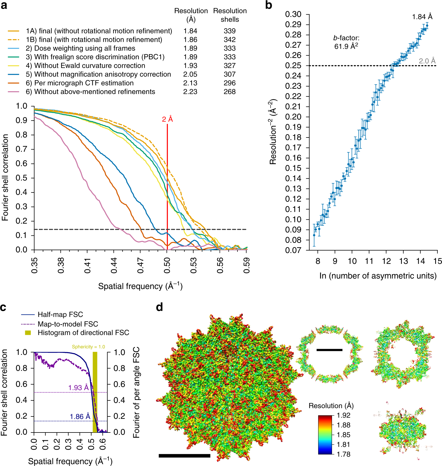 53b1e533c Sub-2 Å Ewald curvature corrected structure of an AAV2 capsid variant |  Nature Communications