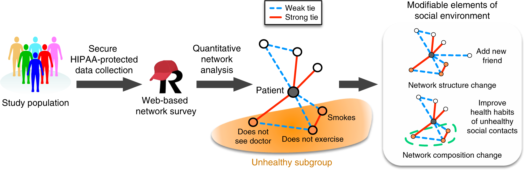 A scalable online tool for quantitative social network assessment