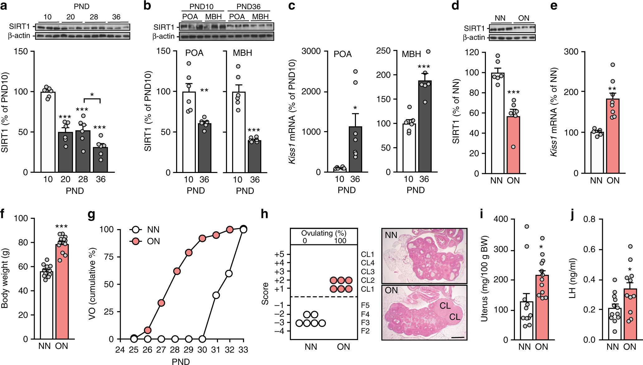 Sirt1 Mediates Obesity And Nutrient Dependent Perturbation Of Outlining Flex Circuits Integral Fingers Manufacturing Processes Pubertal Timing By Epigenetically Controlling Kiss1 Expression Nature Communications