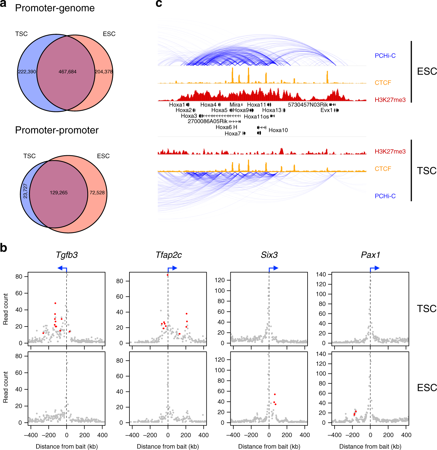 Divergent Wiring Of Repressive And Active Chromatin Interactions Goodall Diagrams Between Mouse Embryonic Trophoblast Lineages Nature Communications