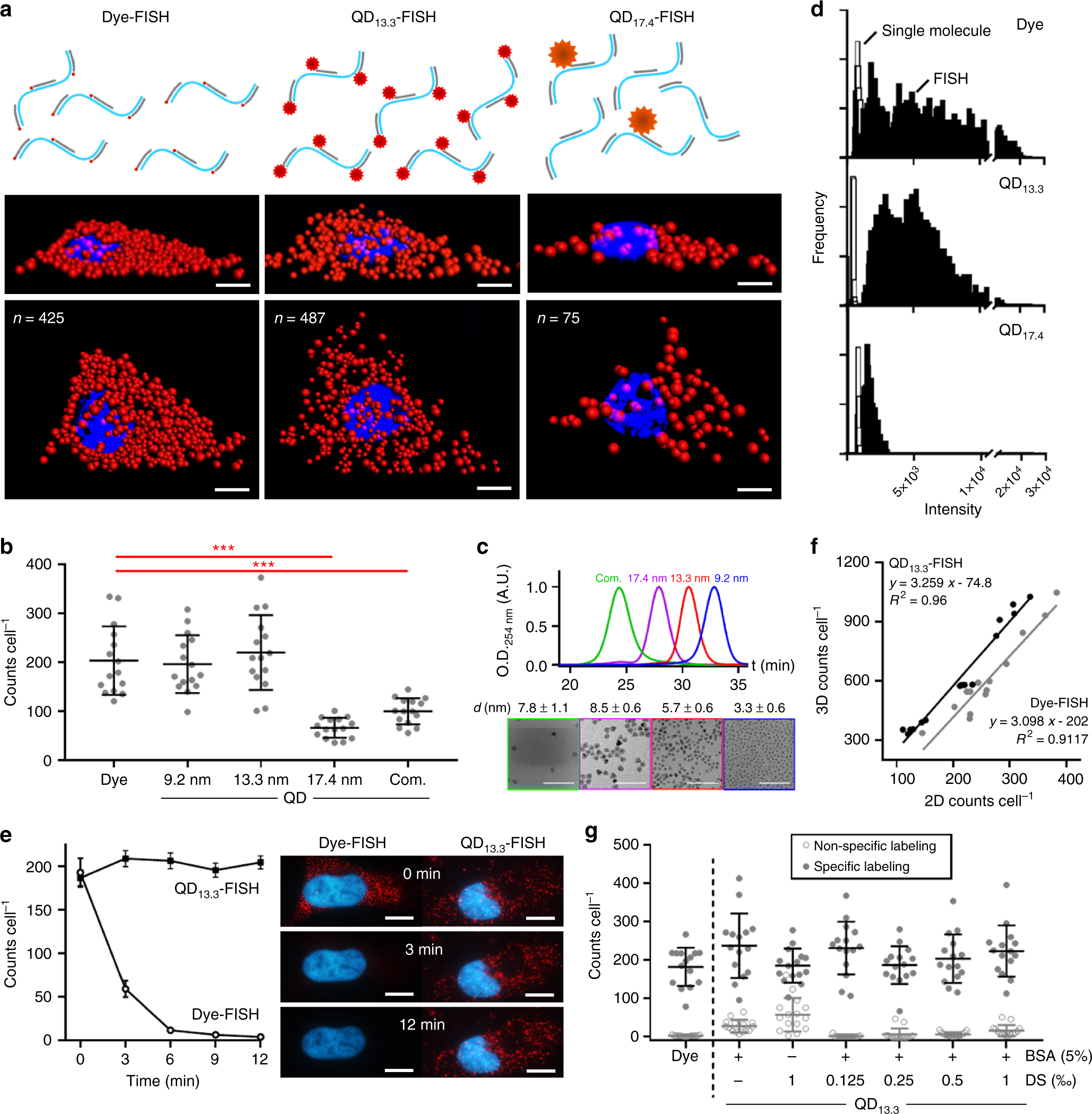 Enhanced mRNA FISH with compact quantum dots   Nature Communications