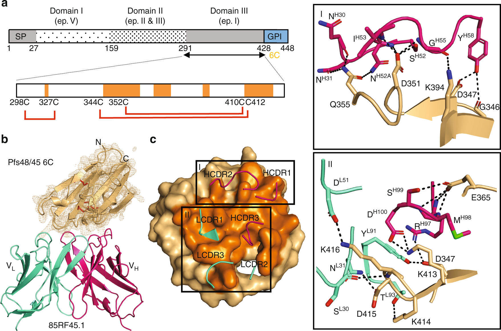 Structural Delineation Of Potent Transmission Blocking Epitope I On Malaria Antigen Pfs48 45