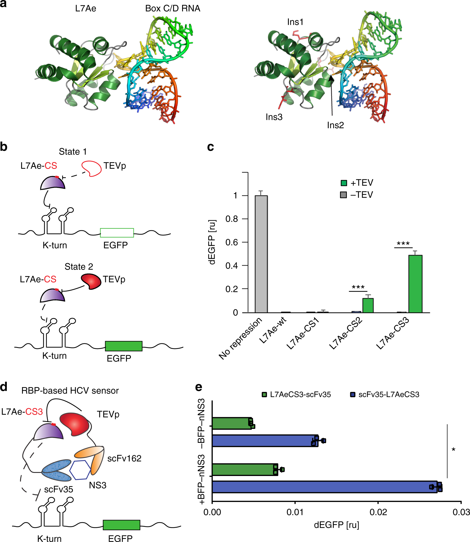 Engineering Protein Devices For Multilayered Regulation Of Translated Schematics Here Mrna Translation Using Orthogonal Proteases In Mammalian Cells Nature Communications