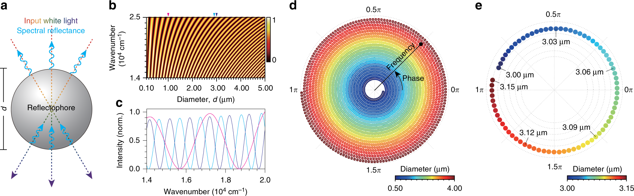 Microsphere-based interferometric optical probe | Nature