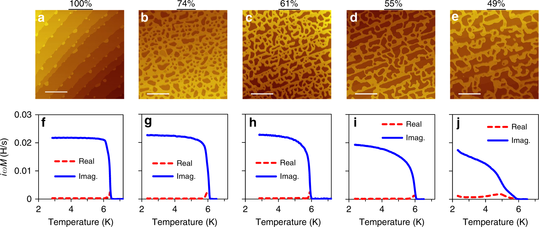 Geometric quenching of orbital pair breaking in a single crystalline  superconducting nanomesh network   Nature Communications e36b79bf6543