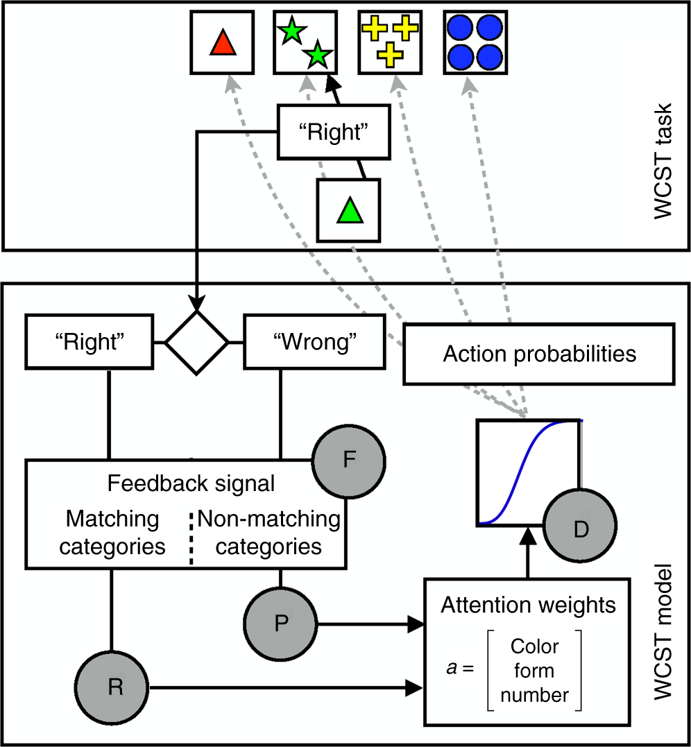 Model-based lesion mapping of cognitive control using the