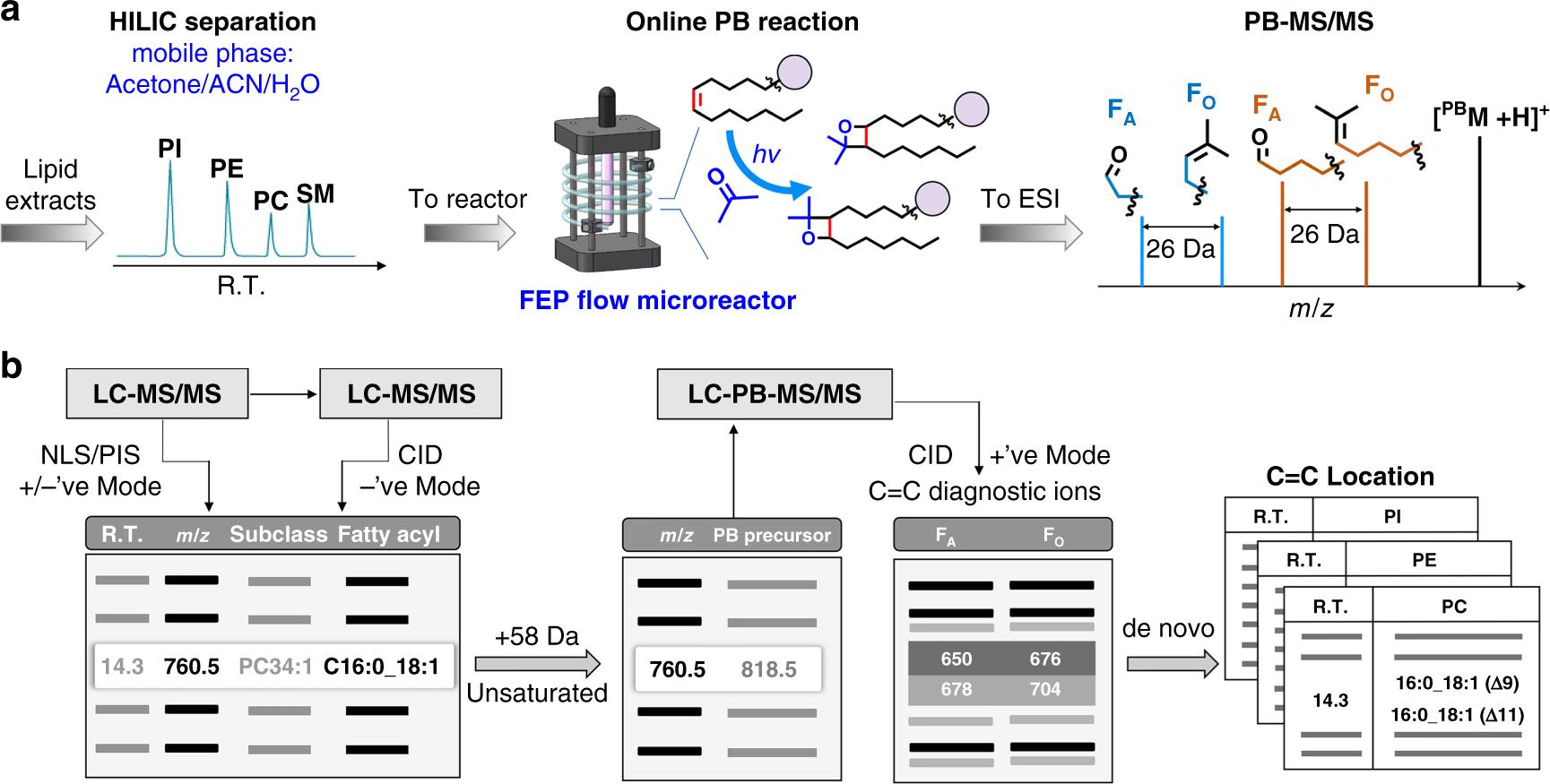 Online photochemical derivatization enables comprehensive mass ...