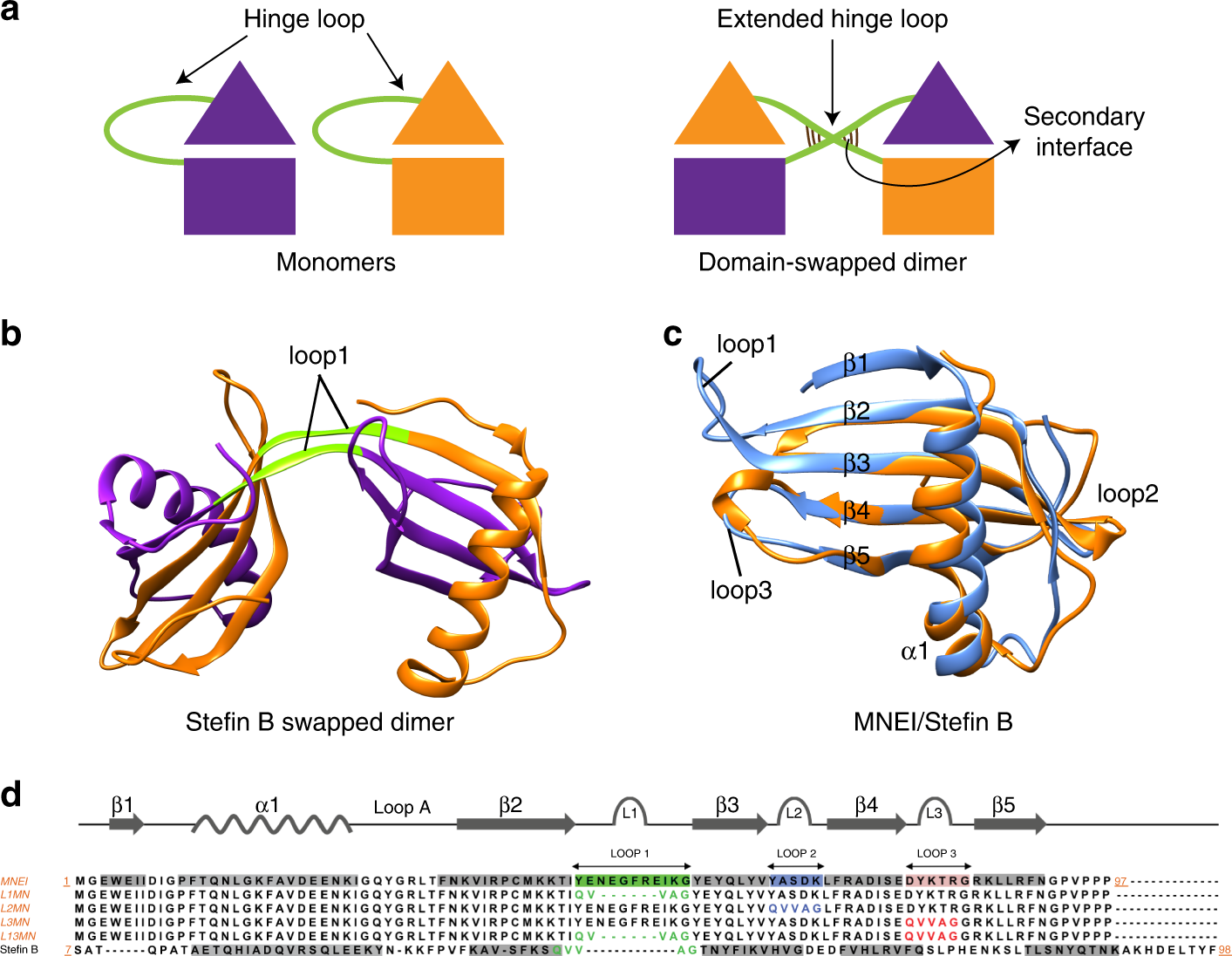 A five-residue motif for the design of domain swapping in proteins | Nature  Communications