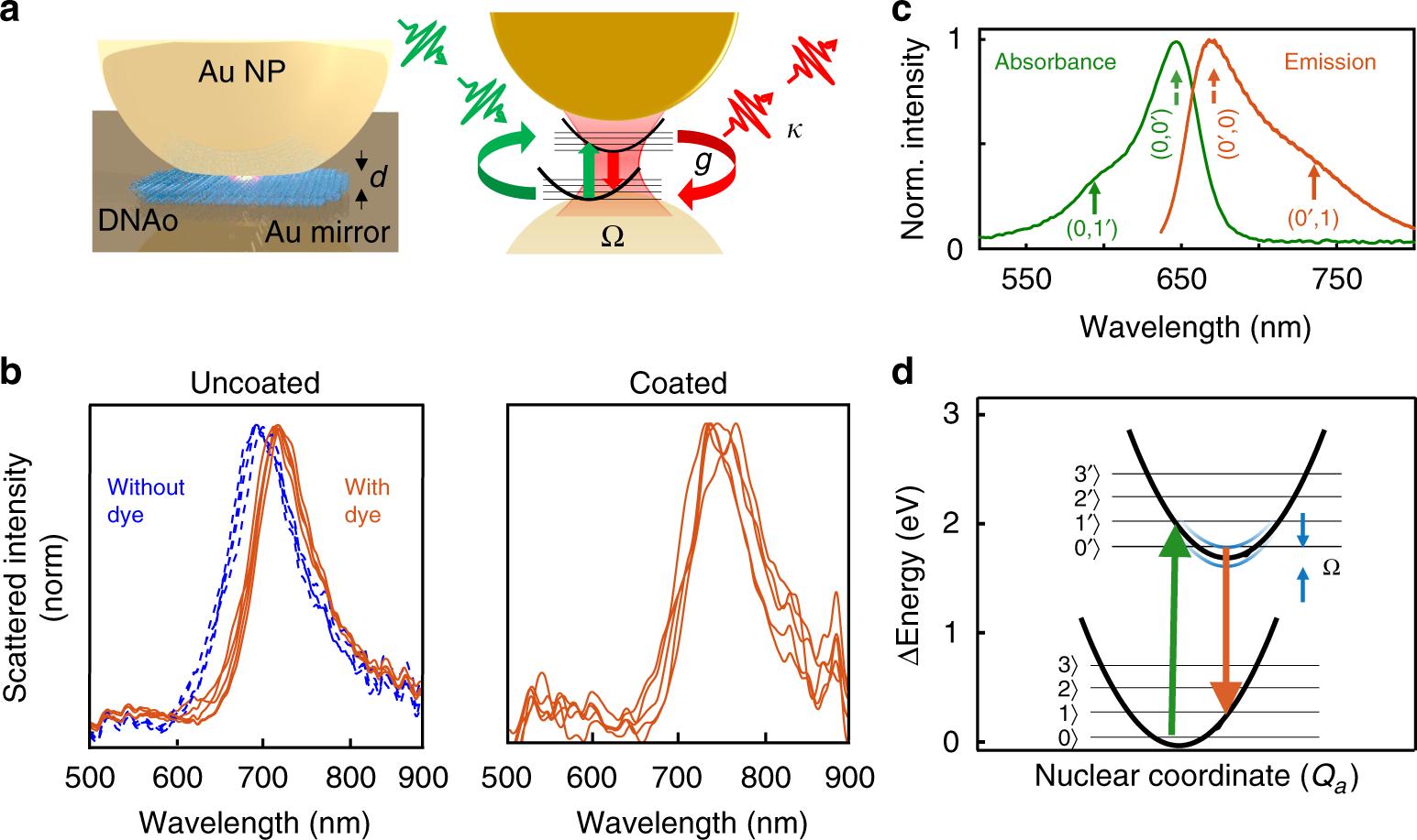Quantum electrodynamics at room temperature coupling a