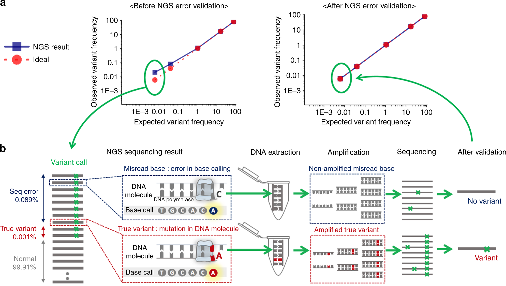 Barcode-free next-generation sequencing error validation for
