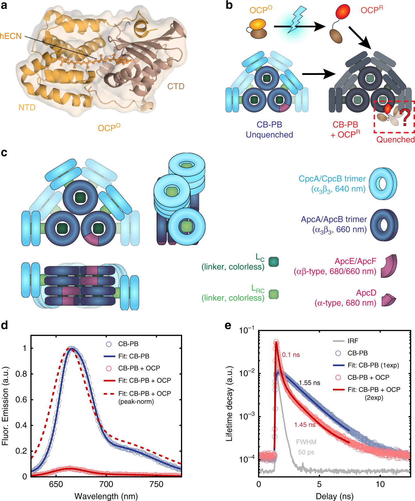 Single-molecule trapping and spectroscopy reveals