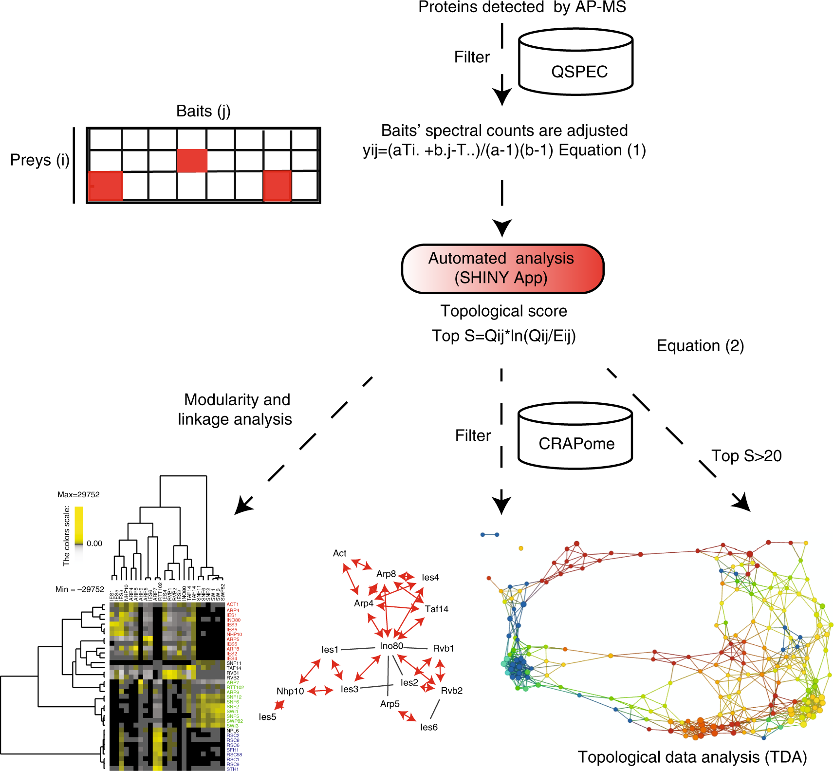 Topological scoring of protein interaction networks   Nature