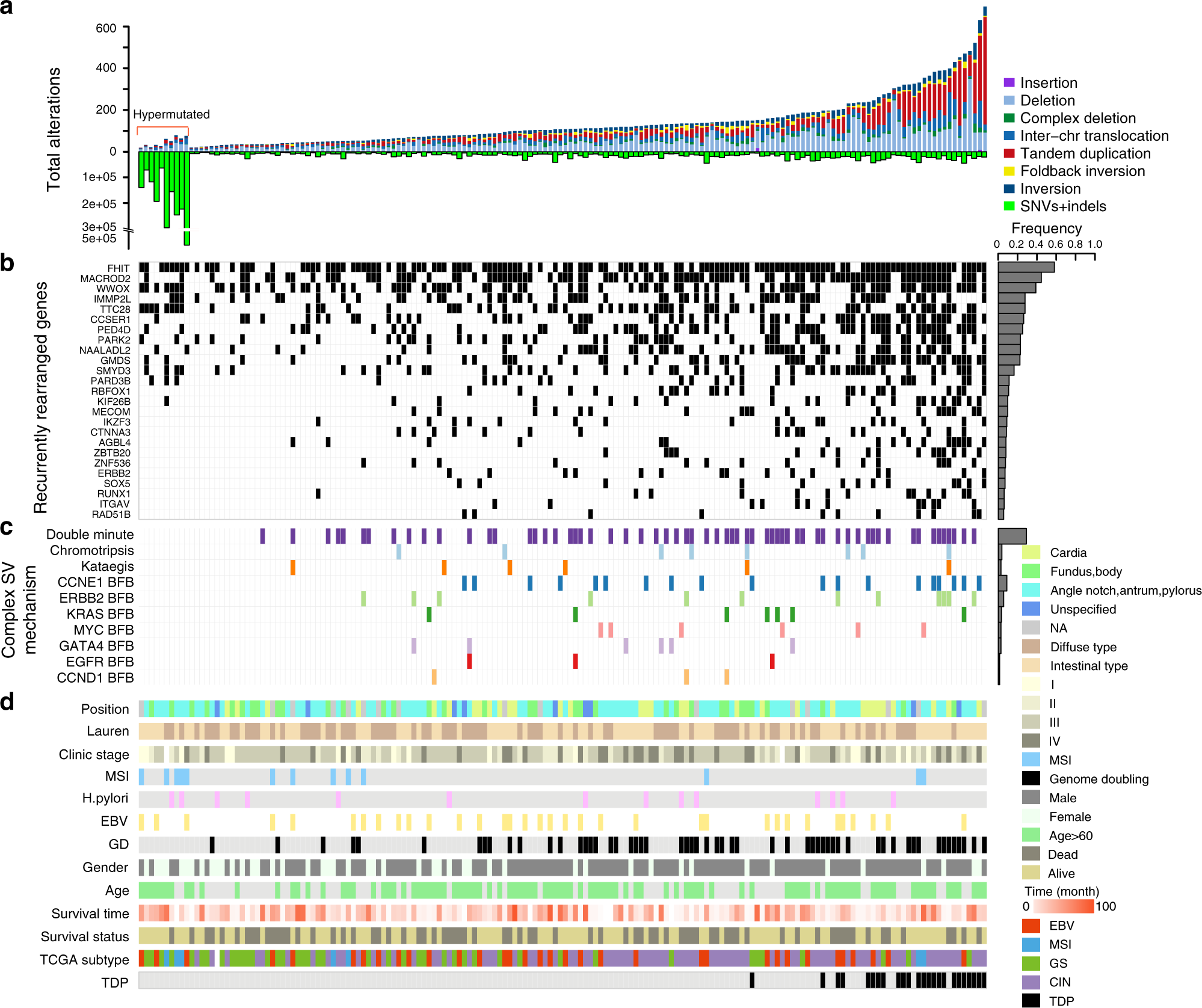 Whole-genome sequencing reveals novel tandem-duplication