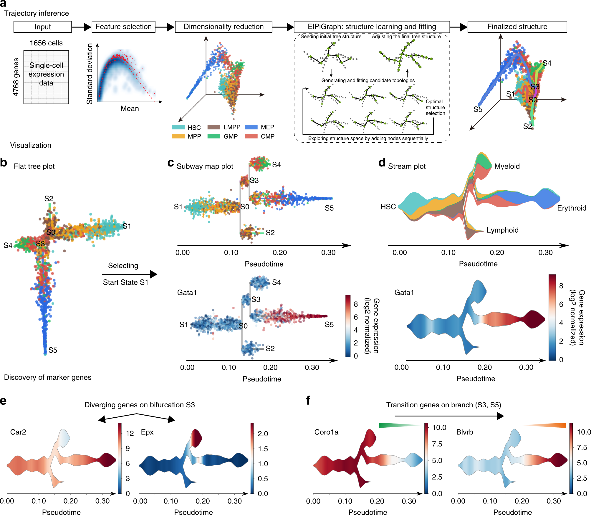 Single-cell trajectories reconstruction, exploration and mapping of