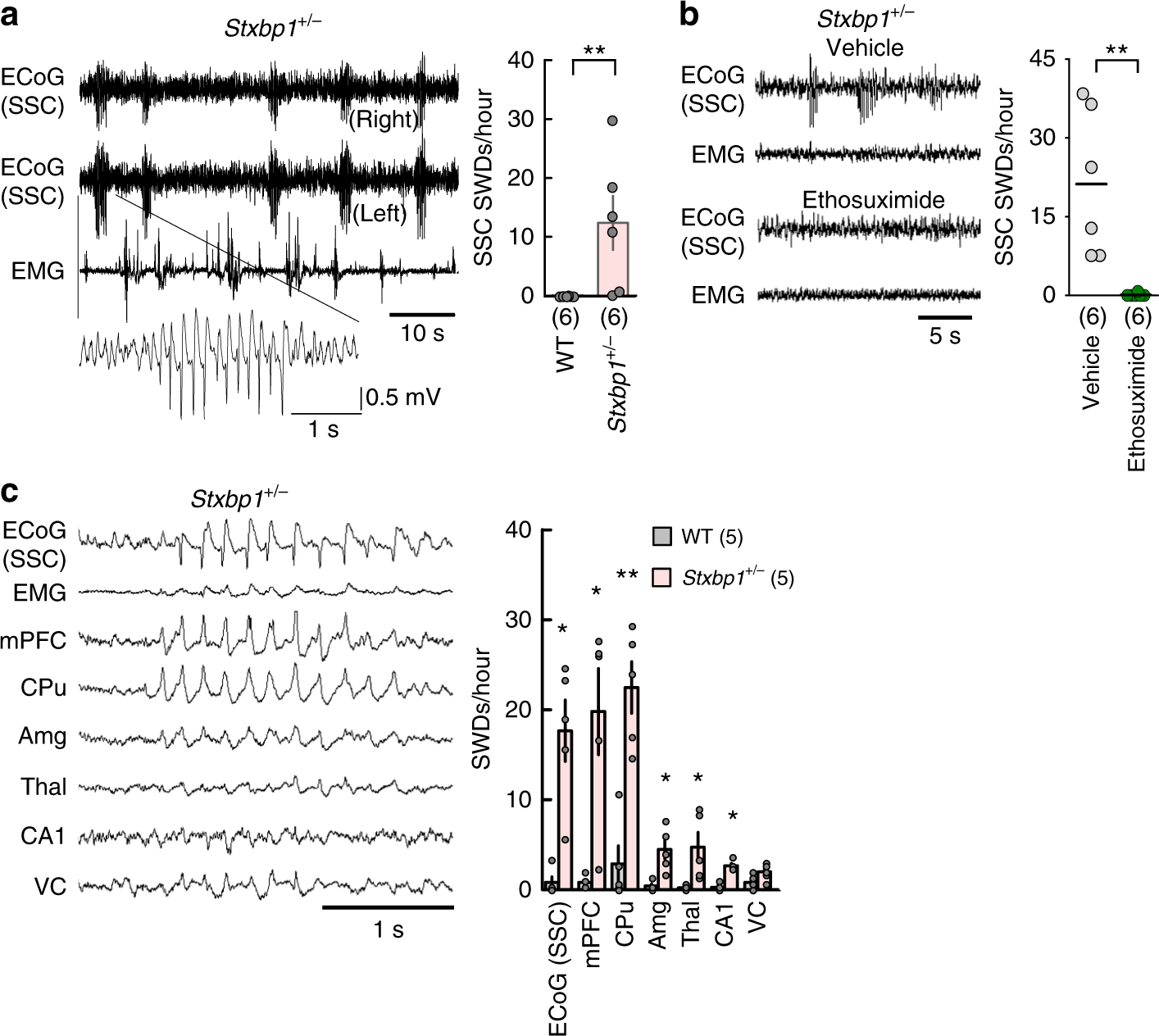 Impaired cortico-striatal excitatory transmission triggers epilepsy