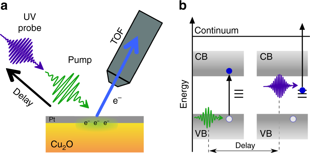 Femtosecond time-resolved two-photon photoemission studies