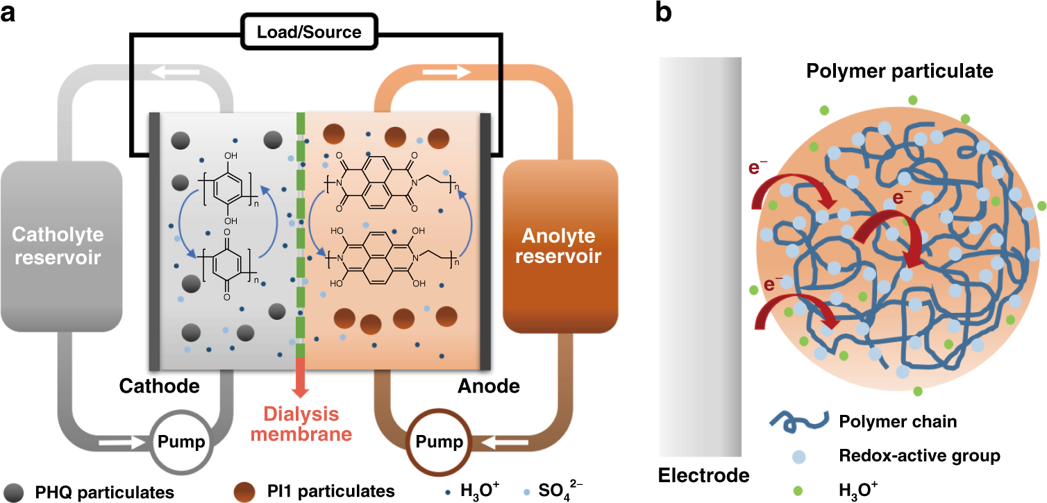 All-polymer particulate slurry batteries | Nature Communications on